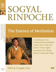 The essence of meditation, sogyal rinpoche